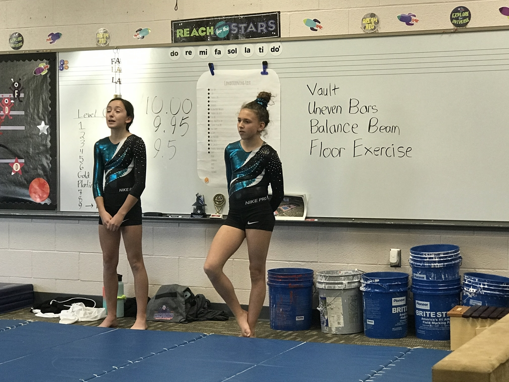 Talented gymnasts