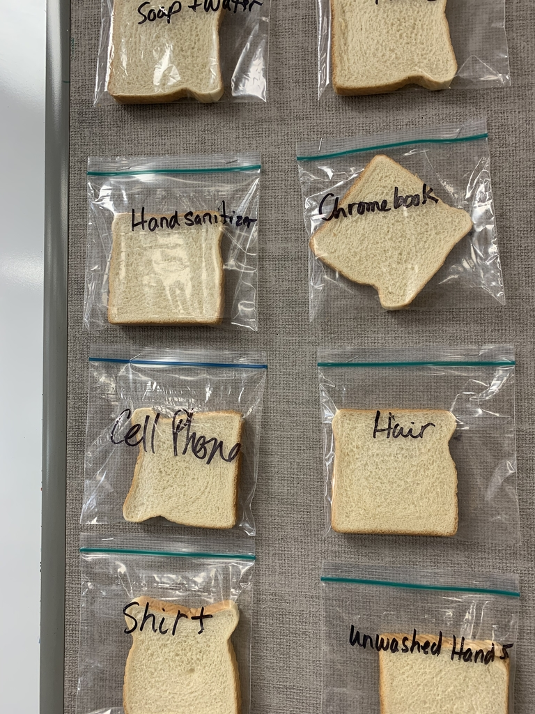 Bread contaminated from a variety of surfaces