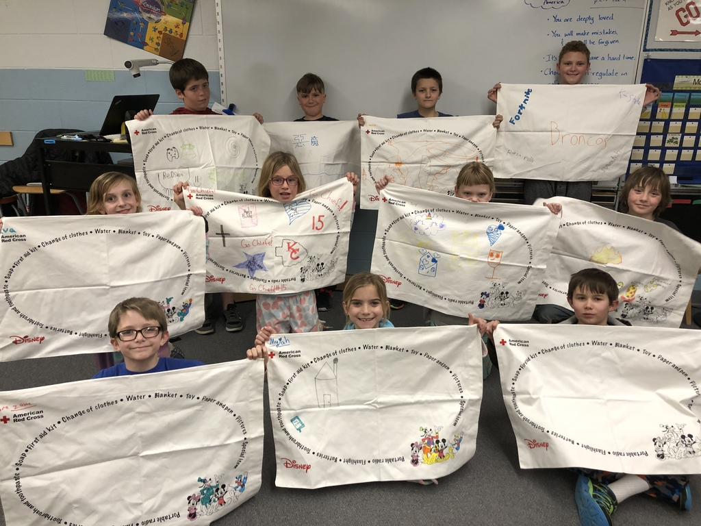 Pillowcases in 4R