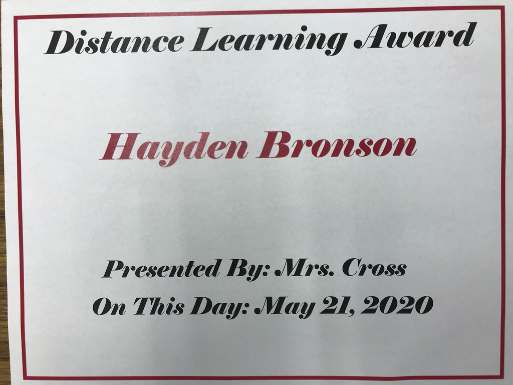 You found your niche with Distance Learning, Hayden!
